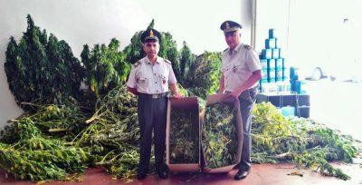 Civitanova - Arrestate due persone per spaccio e coltivazione di droga