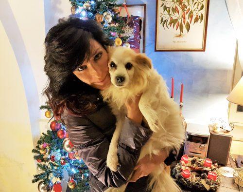 Sisma Marche: la nuova vita di Gino, cane anziano e malato