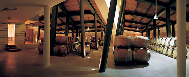 7° Master of Wine: a Osimo il corso per aspiranti guru mondiali del vino