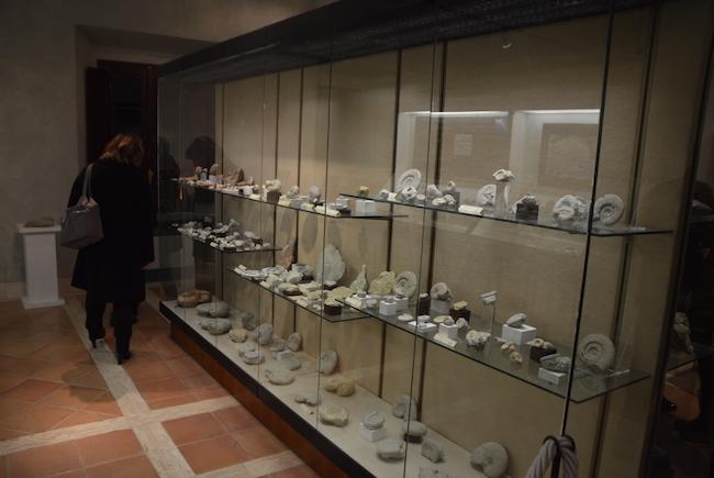 museo archeologico moretti san severino